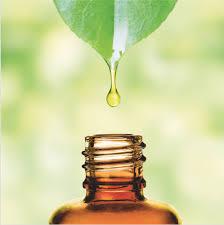 Aromathérapie et l'enfance – Règles d'utilisation